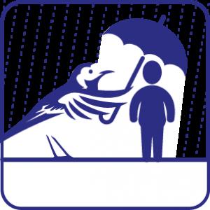 iconen_DWK_Q_v05-13